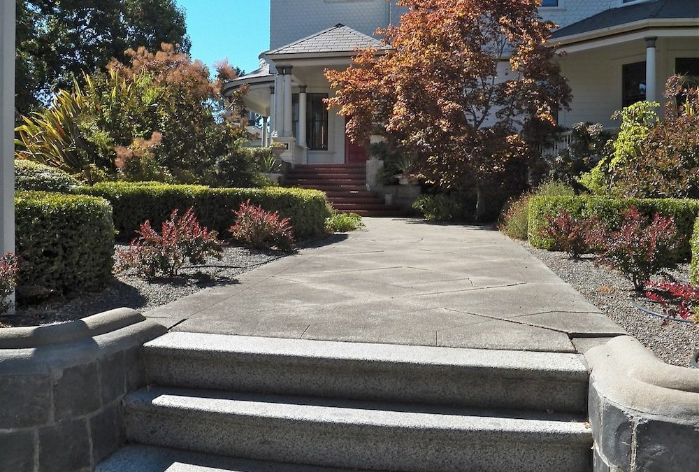 Creative Front Yard Landscaping Ideas You'll Love
