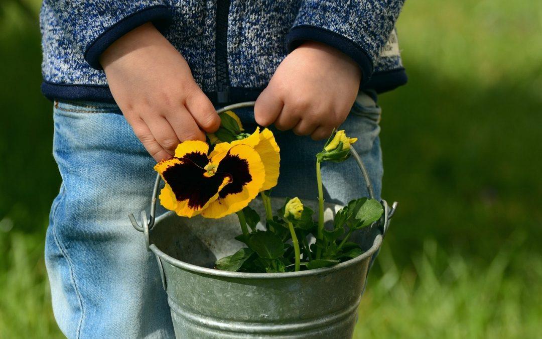 7 of the Best Kid Friendly Backyard Ideas