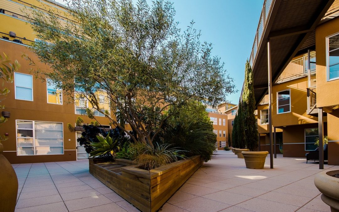 Apartment Landscaping Ideas for Increased Tenant Occupancy