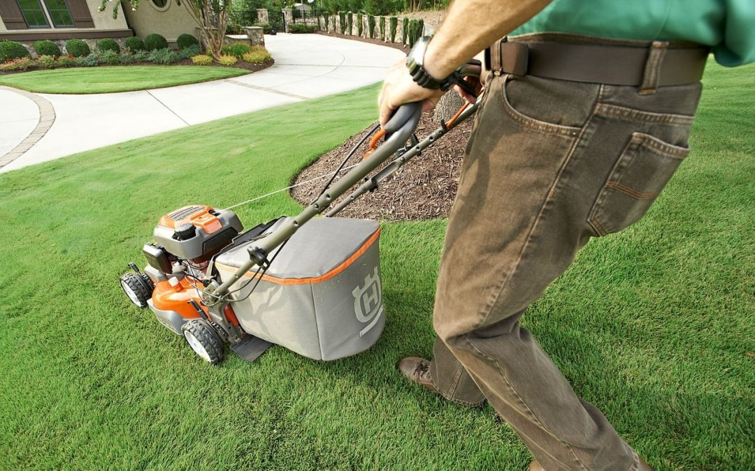 Property owner practicing summer lawn care smart mowing techniques